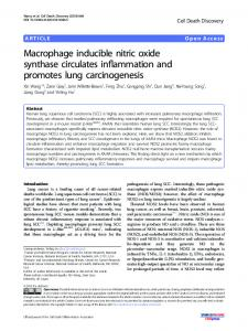 Macrophage inducible nitric oxide synthase circulates ... - Nature