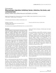Macrophage migration inhibitory factor, infection