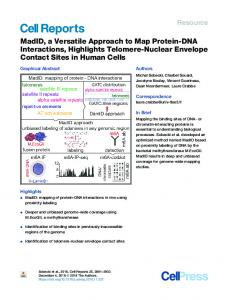 MadID, a Versatile Approach to Map Protein-DNA ... - Cell Press