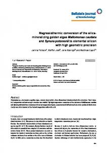 Magnesiothermic conversion of the silica ... - Beilstein Journals