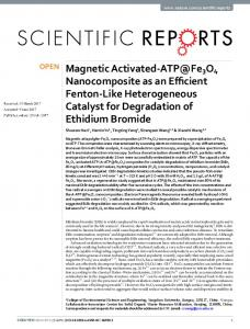 Magnetic Activated-ATP@Fe3O4 Nanocomposite as ...