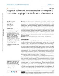 Magnetic polymeric nanoassemblies for magnetic ...