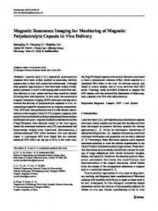 Magnetic Resonance Imaging for Monitoring of Magnetic ...