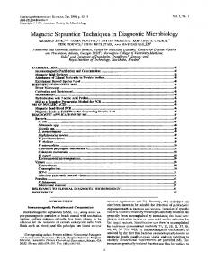 Magnetic Separation Techniques in Diagnostic Microbiology
