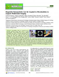 Magnetite Nanoparticles Can Be Coupled to Microbubbles to Support ...