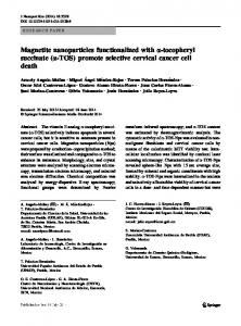Magnetite nanoparticles functionalized with a ...