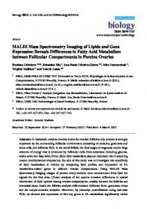MALDI Mass Spectrometry Imaging of Lipids and Gene ... - MDPI