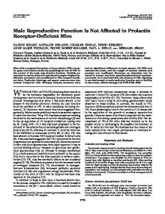 Male Reproductive Function Is Not Affected in Prolactin Receptor ...