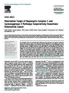 Mammalian Target of Rapamycin Complex 1 and Cyclooxygenase 2 ...