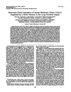 Mammary Gland Expression of Mouse Mammary Tumor Virus Is ...