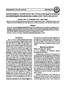 MANAGEMENT OF DRY ROOT ROT OF BLACKGRAM CAUSED BY ...