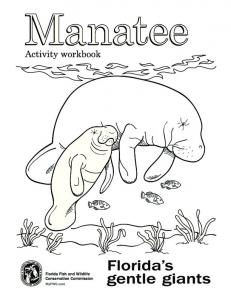 Manatee Coloring Book