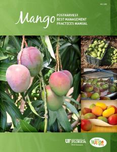 Mango Postharvest Best Management Practices Manual
