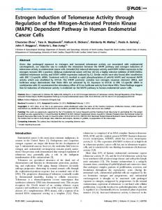(MAPK) Dependent Pathway in