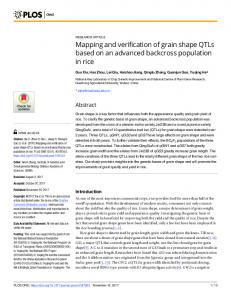 Mapping and verification of grain shape QTLs