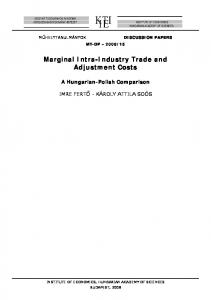 Marginal Intra-Industry Trade and Adjustment Costs