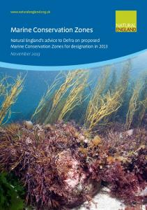 Marine Conservation Zones - Natural England publications