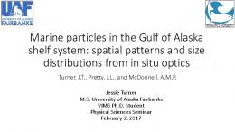 Marine particles from a new point of view: applying ...