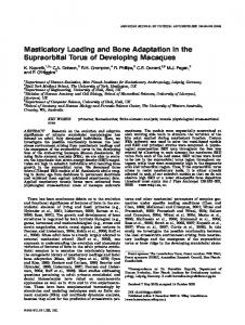 Masticatory loading and bone adaptation in the ... - Wiley Online Library