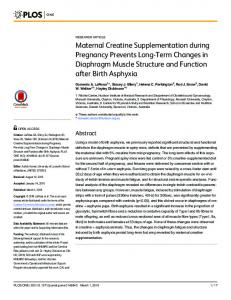Maternal Creatine Supplementation during Pregnancy ... - PLOS