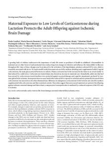 Maternal Exposure to Low Levels of ... - Semantic Scholar