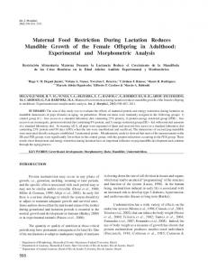 Maternal Food Restriction During Lactation Reduces ... - SciELO