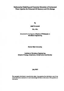 Mathematical Modelling and Numerical Simulation of Carbonated ...