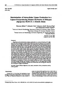 Maximization of Intracellular Lipase Production in a Lipase