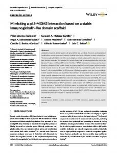 MDM2 interaction based on a stable