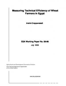 Measuring Technical Efficiency of Wheat Farmers in Egypt - Food and ...