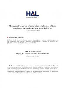 Mechanical behavior of rock joints : influence of joint