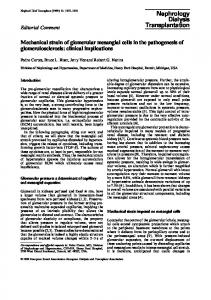 Mechanical strain of glomerular mesangial cells in the pathogenesis of ...