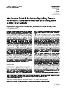 Mechanical Stretch Activates Signaling Events for ... - Springer Link