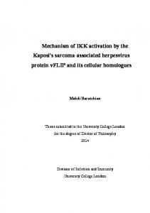 Mechanism of IKK activation by the Kaposi's sarcoma ... - UCL Discovery