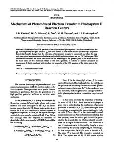 Mechanism of photoinduced electron transfer in photosystem II