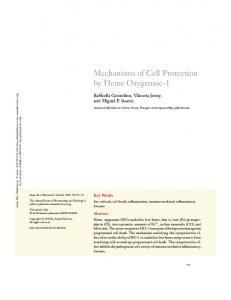 Mechanisms of Cell Protection by Heme Oxygenase-1