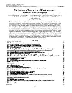 Mechanisms of Interaction of Electromagnetic Radiation with a