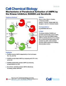 Mechanisms of Paradoxical Activation of AMPK by the ... - Cell Press