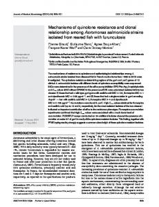 Mechanisms of quinolone resistance and clonal relationship among ...