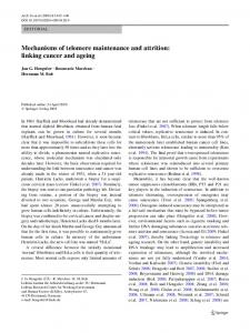 Mechanisms of telomere maintenance and attrition - Springer Link