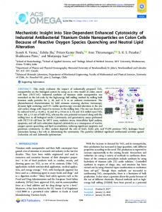 Mechanistic Insight into Size-Dependent Enhanced Cytotoxicity of