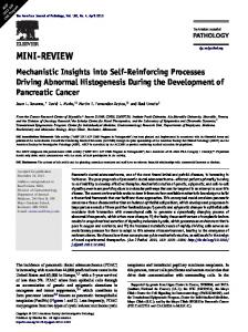 Mechanistic Insights into Self-Reinforcing Processes Driving Abnormal ...