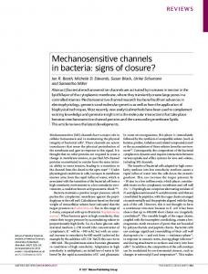 Mechanosensitive channels in bacteria: signs of ... - Columbia University