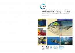 Mediterranean Pelagic Habitat - Regional Activity Centre for ...