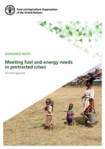 Meeting fuel and energy needs in protracted crises - Food and ...