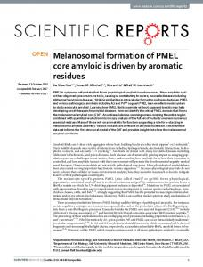 Melanosomal formation of PMEL core amyloid is