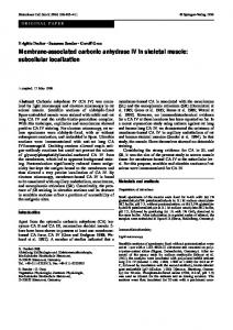 Membrane-associated carbonic anhydrase IV in ... - Springer Link