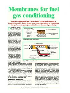 Membrane Fuel Gas Conditioning - Membrane Technology and ...