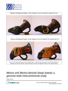 Merino and Merino-derived sheep breeds - Genetics Selection Evolution