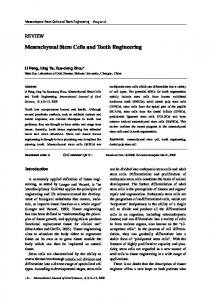 Mesenchymal Stem Cells and Tooth Engineering - BioMedSearch